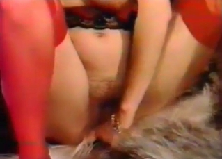 Dog dick stimulated by kinky hooker